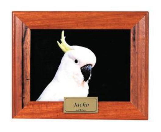 Australian Made Timber Memorial Photo Frames - Pets In Peace